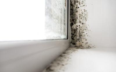 Comment lutter contre l'humidité dans la maison